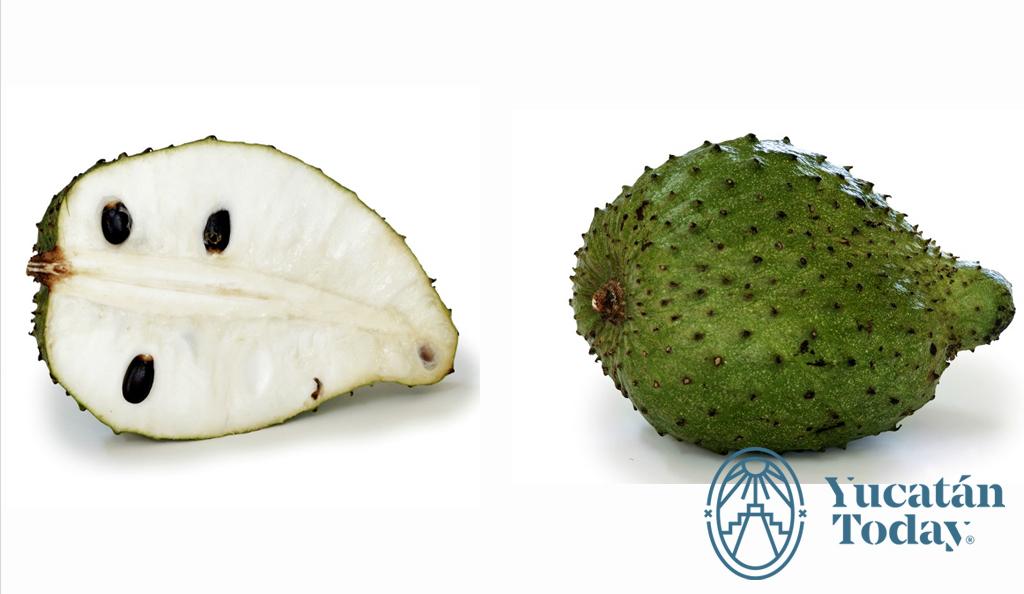Frutas y Verduras de Yucatán | Yucatan Today
