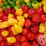 Chile Habanero: Fiery Delight for the Palate
