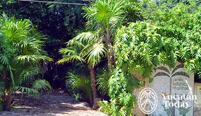 Jard n bot nico regional roger orellana un museo for Plantas de un jardin botanico
