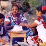 Living Maya Language