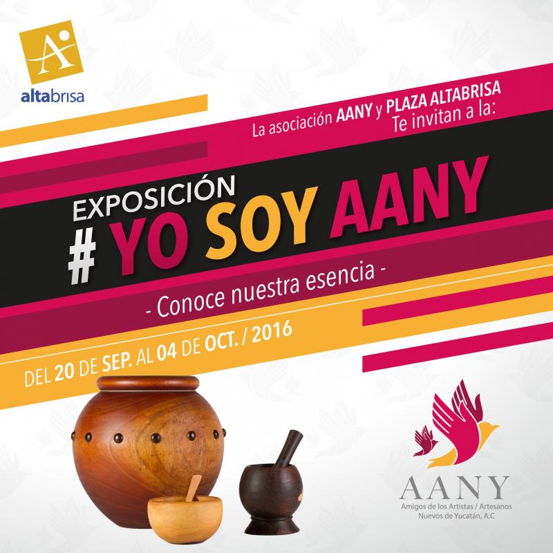 promo-expo-yo-soy-aany