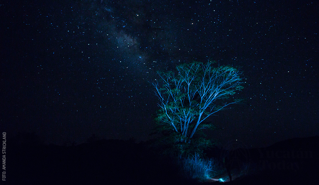 By Night in Yucatán, Night Skygazing and New Moonmusing