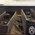Of Mummies and Mysteries: Santa Elena, Yucatán