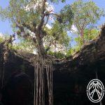 La guía más completa para visitar los cenotes de Homún